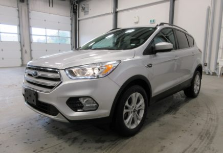 Image for used 2019 FORD ESCAPE SEL 4